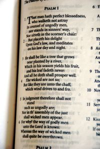 Psalm1metered